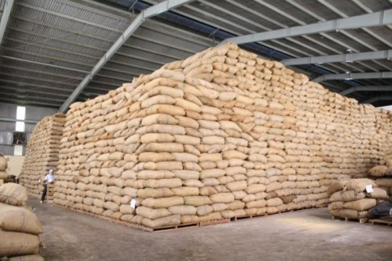 Cashew nuts was stored