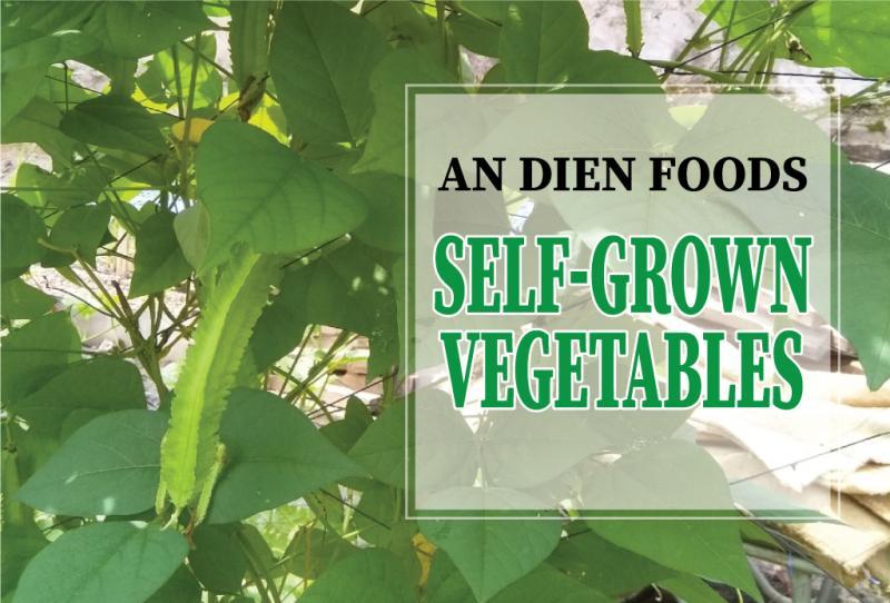 Self-grown Vegetables